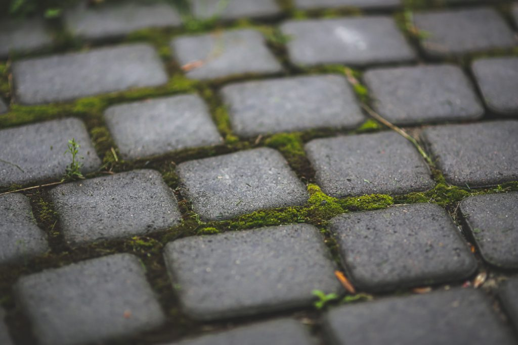 make my backyard safer level paving - JM Insurance